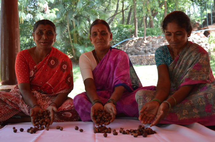 Women sorting soap nuts
